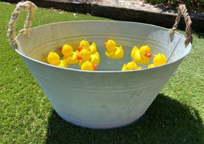 hook a duck garden game